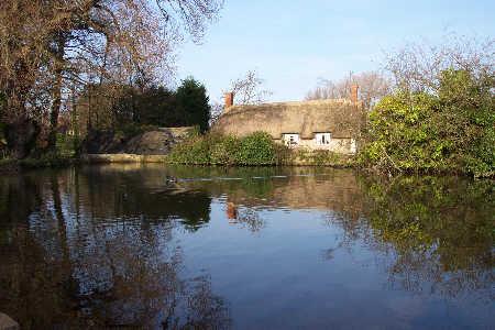 Duck pond at East Quantoxhead - Quantocks, Somerset