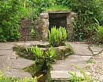 St Decuman's Holy Well